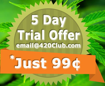 5 Day Trial Offer